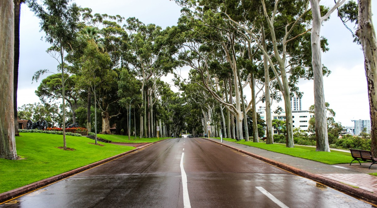 Neighbourhood disputes in Queensland suing for damages