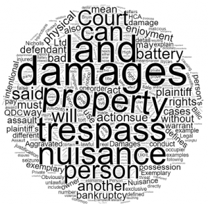 Nuisance and Trespass in Neighbour Disputes Queensland