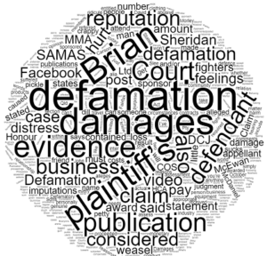 Defamation Claim and Mixed Martial Arts in Queensland